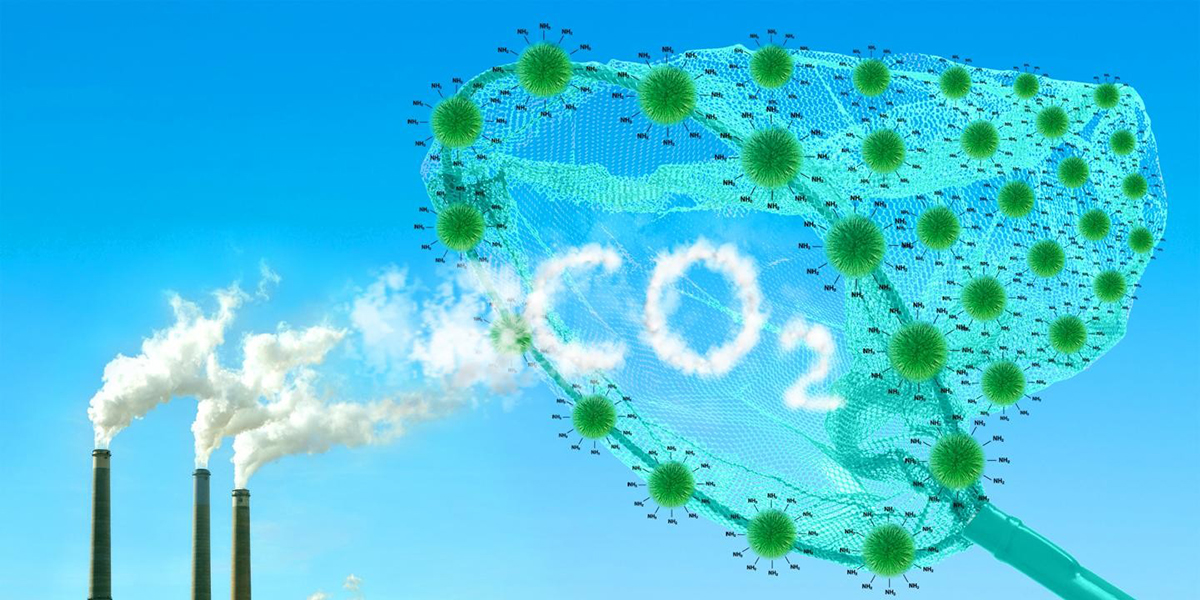 Amazon's carbon emissions rose 19% in 2020 even as Covid-19 pushed global levels down